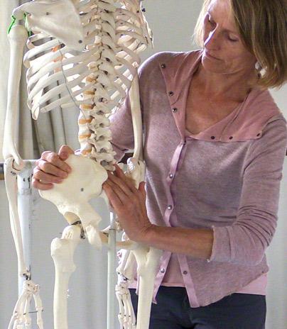 Skeletal System, Body-Mind Centering
